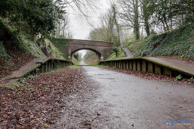 Trailway (18 Mar 2011)